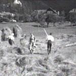 Landwirtschaft Rietz 1938