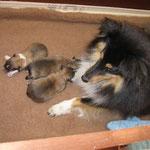 Sally kurz nach der Geburt