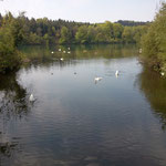 Wehra, Los 4 (Rheinmündung)