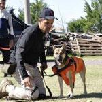 Viper, la perra bombero que salvó una vida