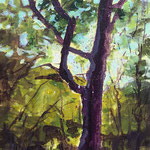 Baum, 30 x 30 cm, 90 Euro
