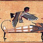 L'âme bâ survole la momie pour la vivifier