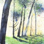 Waldszene