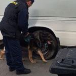 Jedes Auto an der ungarisch-ukrainischen Grenze wird kontrolliert