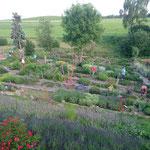 Für einmal wurden die Sängerinnen und Sänger zu bunten Blüemli im eindrücklichen Garten