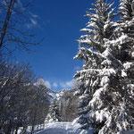Carte postale d'hiver : ça commence bien ;-)