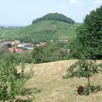 Castle ruin Staufen in Breisgau, especially Markgräfler Land.
