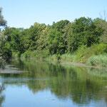 Die Nebenarme des Rheins durchziehen das Gebiet.