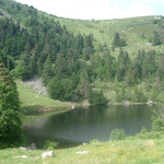 Lac Forlet