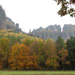 Blick von der Wildwiese zu den Schrammsteinen