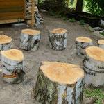 Der magische Baumscheibenkreis