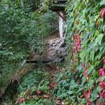 Kellergang im Herbst 2011