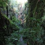 Abstieg vom Kuhstall