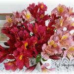 アルストロメリア。これが咲いたら北国の短い真夏の始まりです!