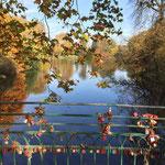 Liebesbrücke im  Rombergpark