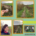 Provider:J.B. ・Place:from Haarlem to the village Vijfhuizen(The Netherlands)・comment:Today was very windy and we walked from the city of Haarlem to the village Vijfhuizen It was a beautiful autumn afternoon 🍁