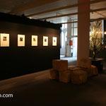 Expo David Sauveur - CIU Rennes