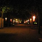 TOMBÉES DE LA NUIT - 2010 - Les Veilleuses