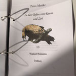 Petra Mettke/Gigabuch Winkelsstein 10/In den Tiefen von Raum und Zeit/Druckskript 2013/Titelblatt
