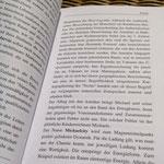 Karin Mettke-Schröder/Inhalt/Zusammenfassung des Gigabuches Michael/Druckheft von 2002/Seite 13