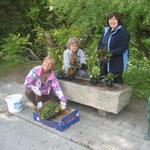 Elisabeth, Gabi und Lotte in der Peter Roseggerstrasse