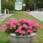 Wienerstrasse - Ortsende