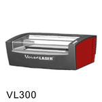 VL300