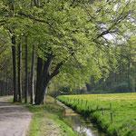vo-002  Weg nabij kasteel Groeneveld in Baarn.