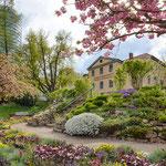 Der Botanische Garten von Jena zur Frühjahrsblüte