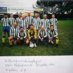 Freundschaftsspiel gegen die Naturfreunde im Jahr 2001 - Ergebnis leider 2:4