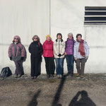 6 lézards le 7 Février 2015