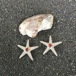 Ohrstecker Seestern Silber mit Rubin