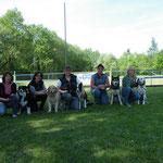 Begleithundeprüfung 2011 (Team HC4Pfoten)