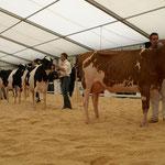 Line Up Kategorie 1 mit Siegerinn Zwysa-Farm Hvezda ROVERDA