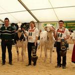Rinderchampions Expomittelland 2014