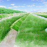 岡山の河川整備 上流部水辺の部分スケッチ