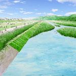 岡山の河川整備 下流部水辺の部分スケッチ