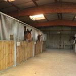 Les écuries des chevaux de club
