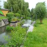 Un petit cour d'eau