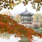Hübsches Herbstlaut