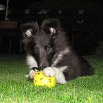 Das ist mein Ball!