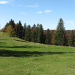 Schoenes Plateau!