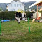 Ich hüpf schnell mal rüber!!!