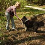 Sprungübung im Wald!