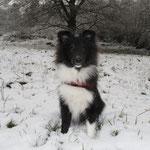 Mutig wie ich bin, setze ich mich doch direkt in den Schnee!!