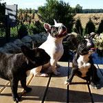 Lilly und ihre Töchter Betty und Franzi