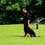 Arne mit Brisko - IPO2