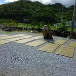 この工程が、丈夫な沖縄ビーグ畳表を生み出します。。