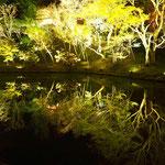 これ、わかるでしょうか。池に映っているのです。淵に立つと、崖下に吸い込まれそうになる錯覚を覚えます。