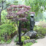 親鸞聖人と雨のお庭。風情があります。